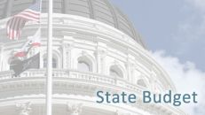 State Budget News